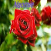 medium Naomie - in gesprek